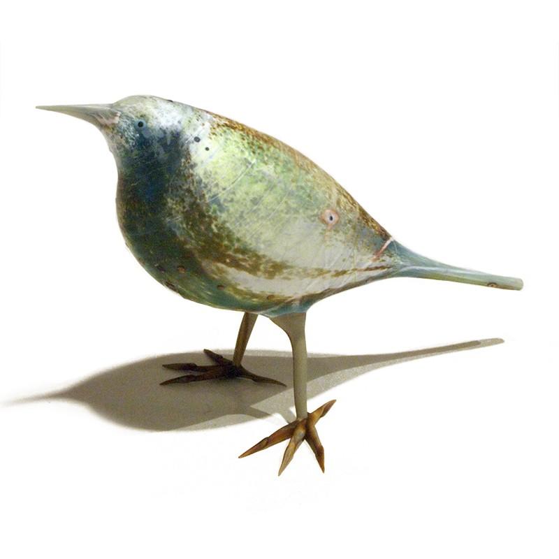 Speckled Aqua Jay