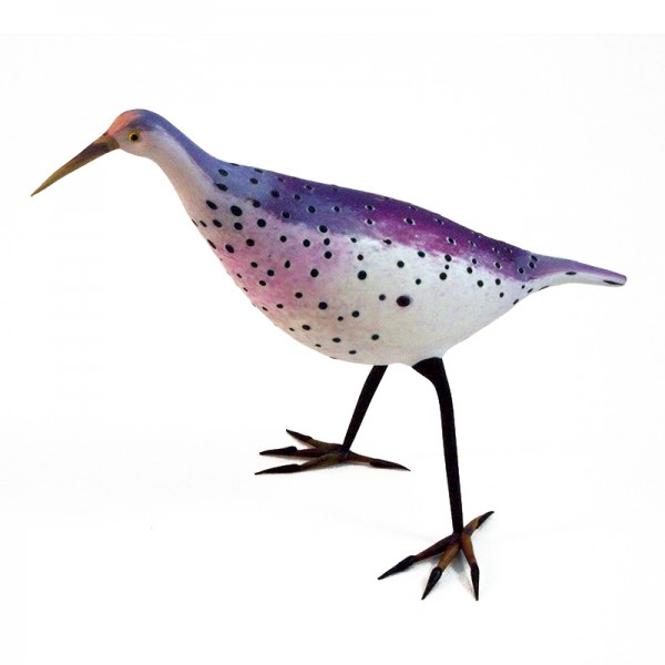 The Purple Willet