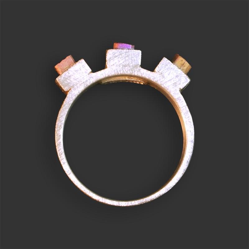 Titanium Series Ring #P039