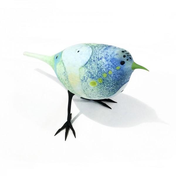 Dotted Blue Lovebird