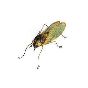 Andrea Uravitch, Grasshopper