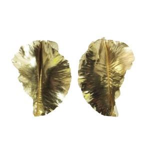 Sue Aygarn-Kowalski, Leaf Earrings
