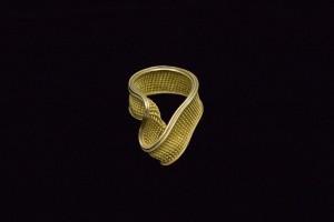 HuML_Ring111_1