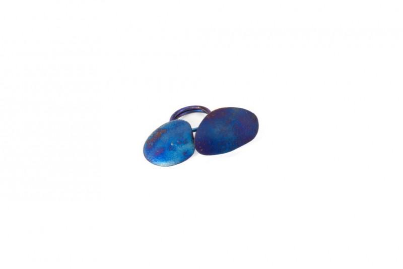 bluewing4