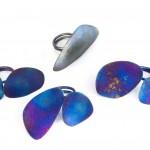 bluewings (1)