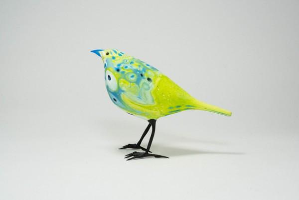 LimeGreen,Marbleizedfinch