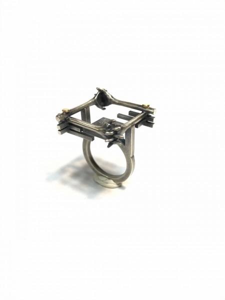 Ring 1 Ajpg