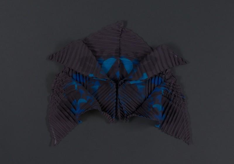 SEnoch_CRINOIDEA_unfolding2 kopie