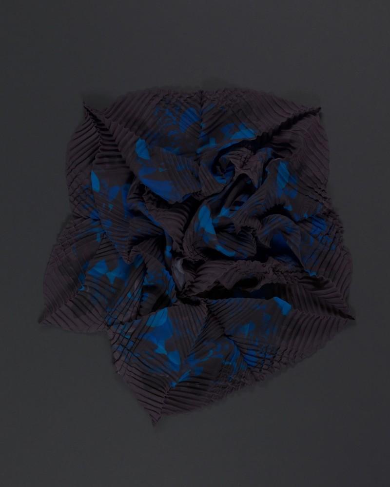 SEnoch_CRINOIDEA_unfolding3 kopie