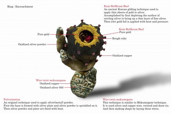 ArataFuchi Ring Explanation